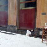 Sevilla. Artistas callejeros (8)