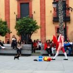 Sevilla. Artistas callejeros (32)