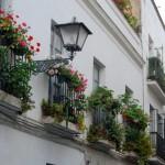 Sevilla. Callejeando (32)