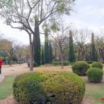 Sevilla. La Albuhaira  (7)