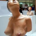 Sevilla. Las curvas de Venus (8)