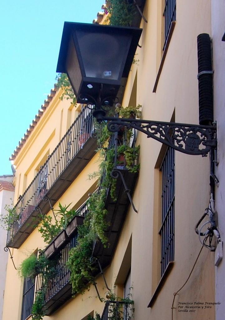 Sevilla. Alcaiceria y Foro (14)