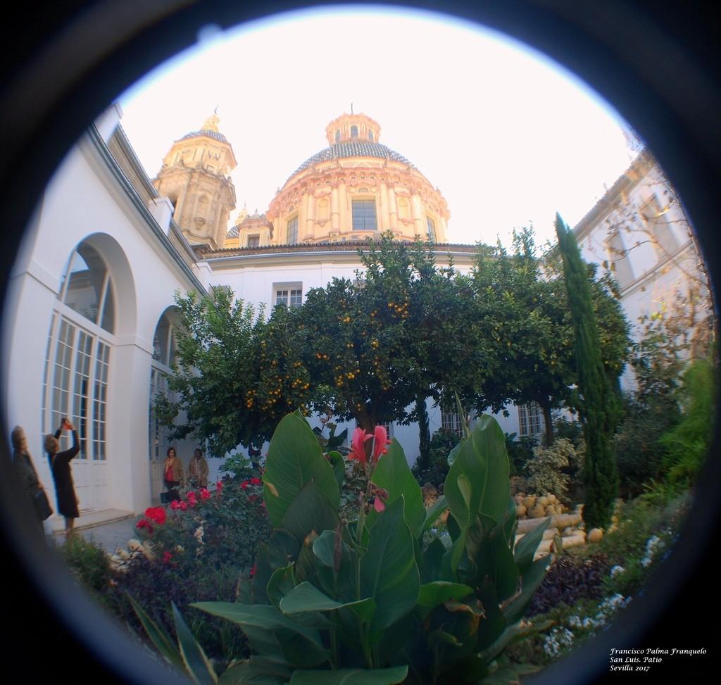 Sevilla. San Luis. Patio (3)