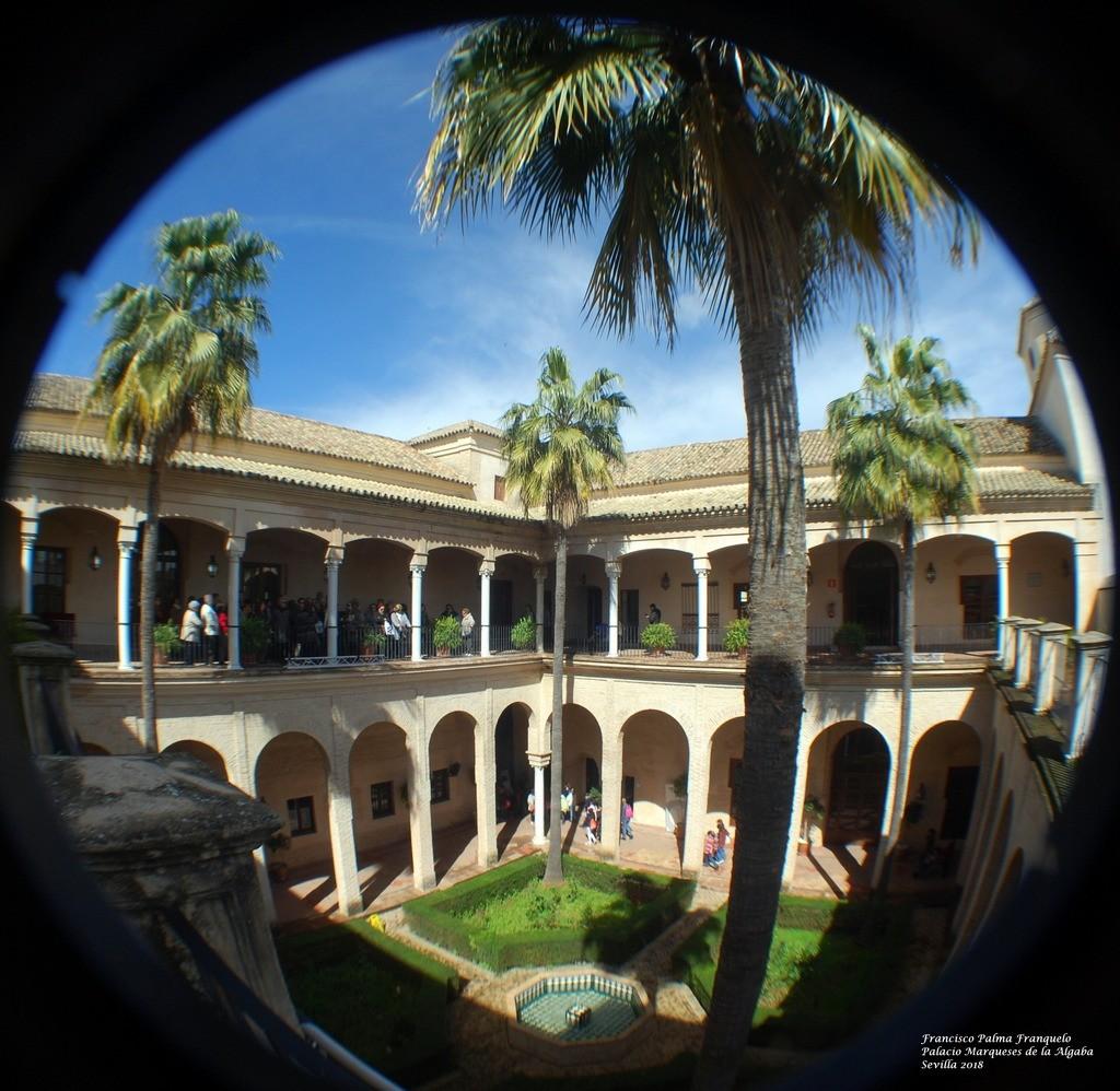 Sevilla. Palacio de los Marqueses de la Algaba (35)