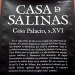 Sevilla. Casa de Salinas (1)