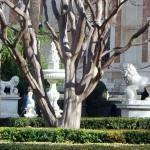 Sevilla. Archivo de Indias y desde él (3)