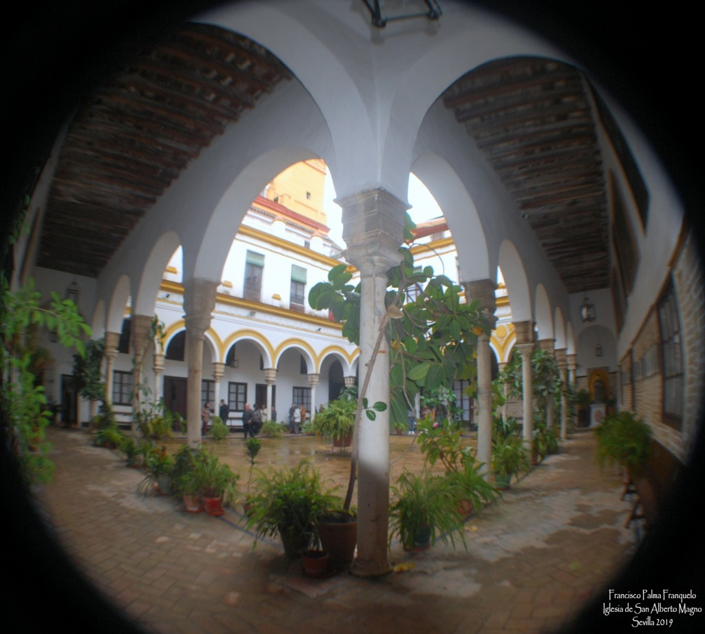 Iglesia de San Alberto Magno (14)